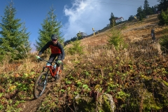 trasee-mountain-bike-1