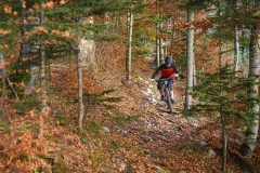 trasee-mountain-bike-12