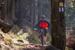 trasee-mountain-bike-3